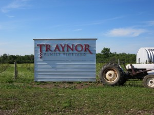 Traynor Family Vineyard IMG_3000